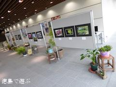 徳島県阿波市 阿波オープンガーデン2015 フォトコンテスト受賞作品展