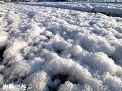 2012年2月19日 徳島 雪