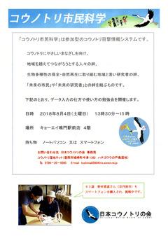 徳島県鳴門市 コウノトリ市民科学 コウノトリ目撃情報システム