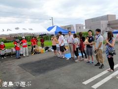 スイカ割り世界大会 in 阿波市 2013