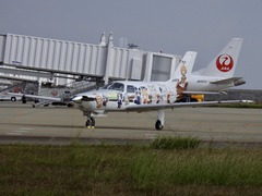 徳島県 徳島阿波おどり空港 けものフレンズ けもフレ痛飛行機 2017