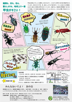 徳島県徳島市 文化の森 企画展示 甲虫すごいぜ! 2020