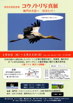 特別天然記念物 コウノトリ写真展 鳴門の大空へ 羽ばたけ!