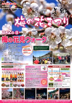 美郷 梅の花まつり 2014