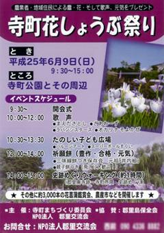 寺町公園 花菖蒲園 2013