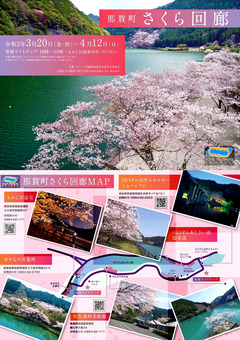 徳島県那賀郡那賀町 スマート回廊 夜桜ライトアップ 2020