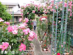 徳島県阿波市阿波町 阿波オープンガーデン 2015