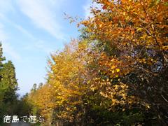 岳人の森 2013