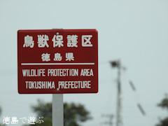徳島県鳴門市大麻町 鳴門コウノトリ鳥獣保護区