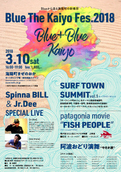 徳島県 まぜのおか ブルーザ海陽フェス Blue The Kaiyo Fes.2018
