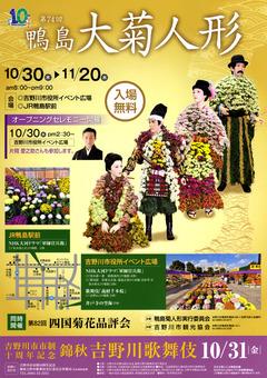 徳島県吉野川市 第74回 鴨島大菊人形、第82回 四国菊花品評会 2014