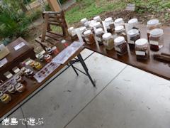 徳島県徳島市 徳島大学 薬用植物園 2014