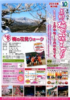 徳島県吉野川市 美郷 梅の花まつり 2015