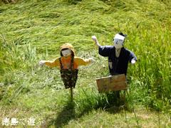 樫原の棚田 2011年9月