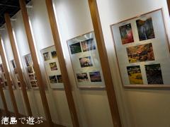 第7回 とくしま花のある風景フォトコンテスト 写真展