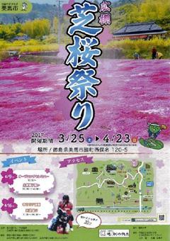 徳島県美馬市脇町 広棚 芝桜祭り 2017