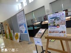 徳島県 埋蔵文化財発掘調査成果速報展 発掘とくしま 2014