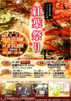 徳島県名西郡神山町 神山森林公園 イルローザの森 紅葉祭り 2018