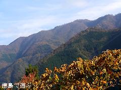 岳人の森 からの景色 2013