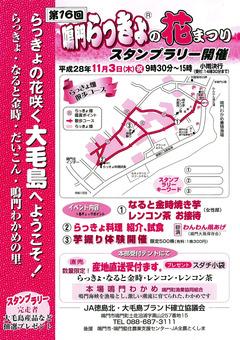 徳島県鳴門市土佐泊浦 鳴門らっきょの花まつり 2016