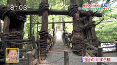 旅サラダ 俺のひとっ風呂 祖谷のかずら橋