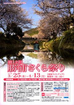 徳島県勝浦郡勝浦町 第12回 勝浦さくら祭り 2015