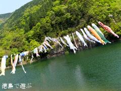 宮川内ダム公園 鯉のぼり 2013