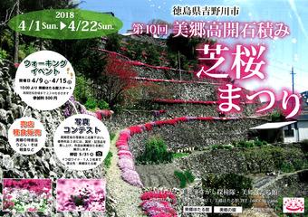 徳島県吉野川市美郷 第10回 高開石積み シバザクラまつり 2018