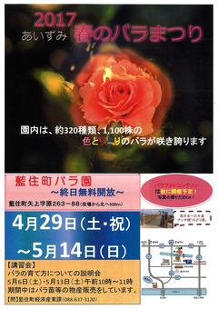 徳島県板野郡藍住町 あいずみ 春のバラまつり 2017