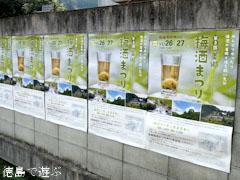 第3回 美郷梅酒まつり 2011