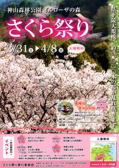 徳島県名西郡神山町 神山森林公園 イルローザの森 さくら祭り 2018