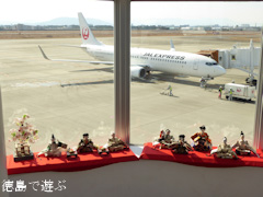 徳島県板野郡松茂町 徳島阿波おどり空港 ひな人形 2016