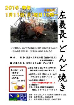 徳島県板野郡松茂町 月見ヶ丘海浜公園 左義長 どんど焼き 2016