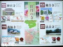 徳島 牡丹の寺