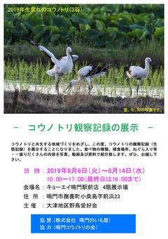 徳島県鳴門市 コウノトリ観察記録の展示