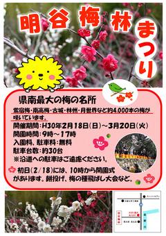 徳島県阿南市 明谷梅林まつり 2018