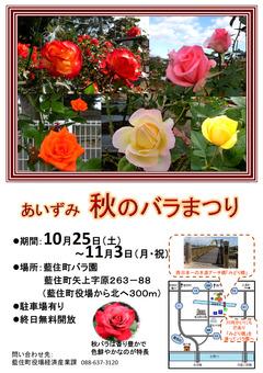 徳島県板野郡藍住町 あいずみ 秋のバラまつり 2014