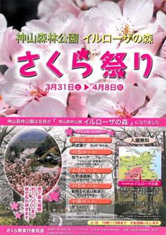 神山森林公園 イルローザの森 さくら祭り 2012