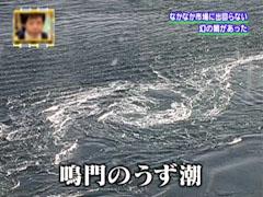 幻の鯛 鳴門の鯛 鳴門 うず潮