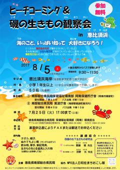 徳島県 美波町 恵比須浜 ビーチコーミング 磯の生きもの観察会 2017