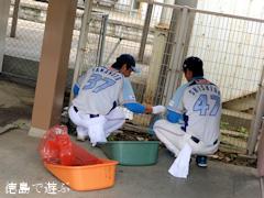 徳島インディゴソックス JR蔵本駅周辺 クリーンアップ活動 2014