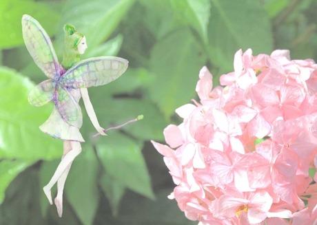 無料セミナー「あなたは幸せを運ぶ妖精!~妖精への目覚めの方法~」@1/26 大阪 谷町四丁目