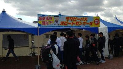 花園ラグビー場ドッグラン (11)