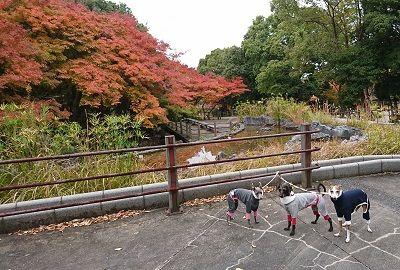鶴見緑地7