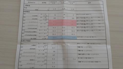 イタグレこまり血液検査