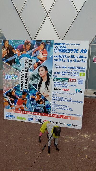 花園ラグビー場ドッグラン (4)