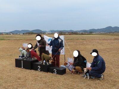 20191229klcc9_他犬種中型Edenクラス