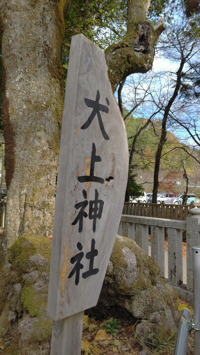 犬上神社イタグレ (3)