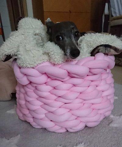 手編犬用ベッド8