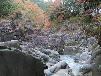 大滝神社大蛇ヶ淵イタグレ (3)